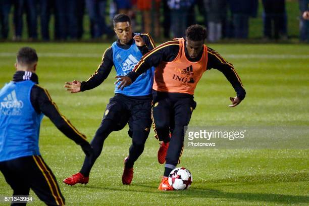 Youri Tielemans midfielder of Belgium and Divock Origi forward of Belgium picture during the training session of the Red Devils at the national...