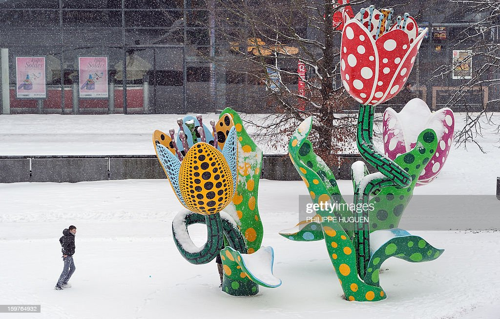 A youth walks past an outdoor sculpture, in Lille, after snowfall, on January 20, 2013.