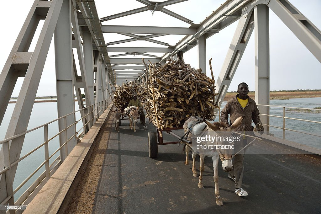 Youths use carts and donkies to carry wood, on a bridge over the Niger river, on January 22, 2013 near Segou, 240km North of Bamako. Mali's army chief today said his French-backed forces could reclaim the northern towns of Gao and fabled Timbuktu from Islamists in a month, as the United States began airlifting French troops to Mali.