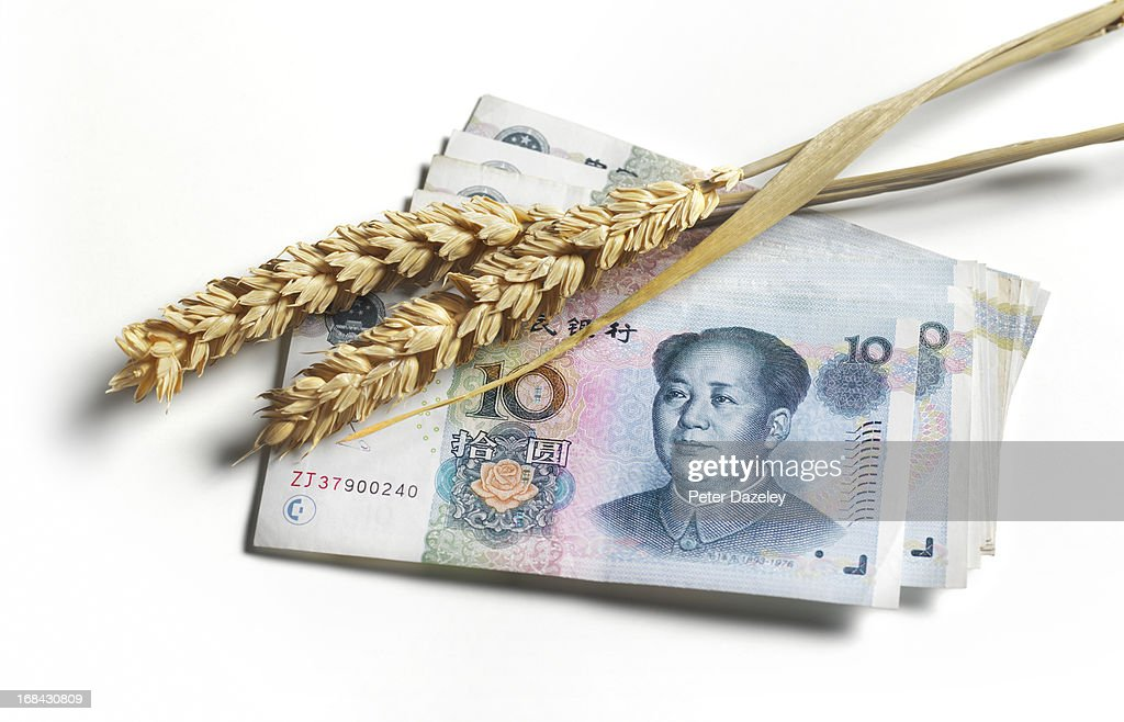 Yuan bank note with ear of wheat : Stock Photo
