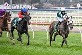 AUS: Geelong Racing Club Race Meeting