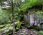 Yulong Xueshan (Jade Mountain)