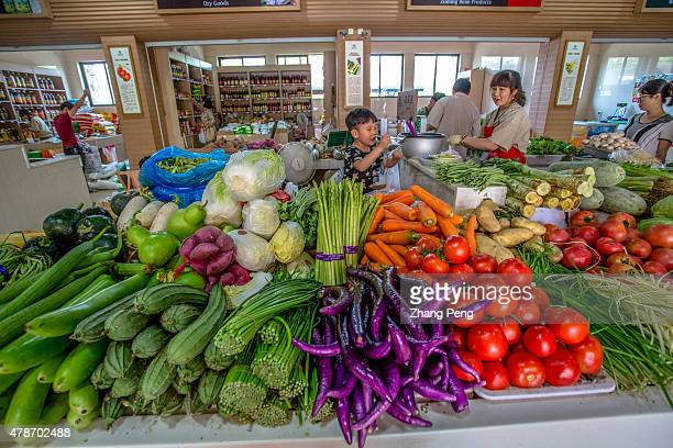 LIANGZHU HANGZHOU ZHEJIANG CHINA Yuniao vegetable market which is said to be the cleanest vegetable market in Hangzhou also appeals many tourists...