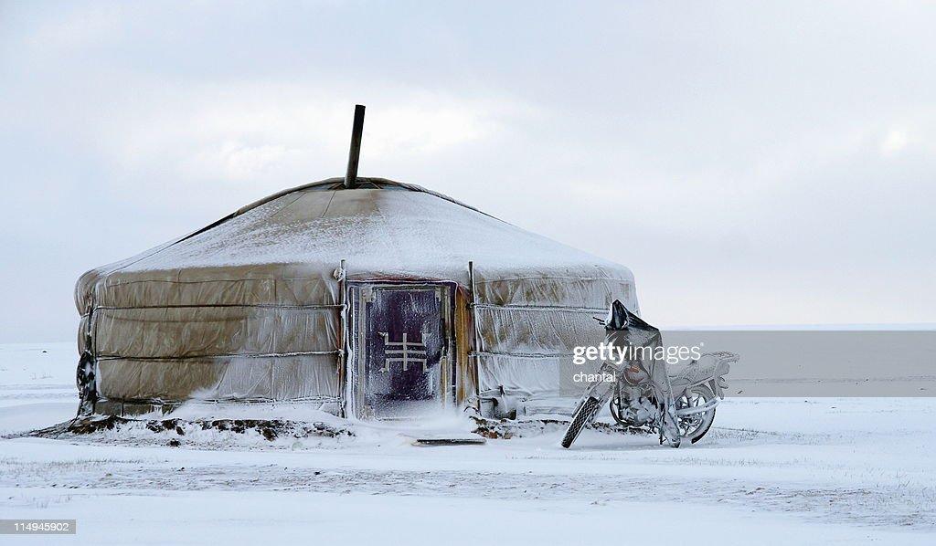 Yurt in snow at khustain nuruu in mongolia : Stock Photo