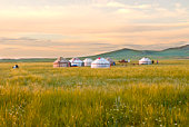 Yurts in Grasslands at sunset in Inner Mongolia Ch