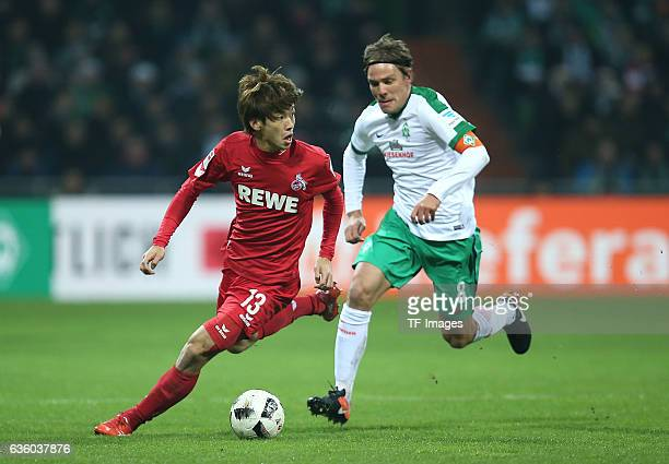 Yuya Osako of Cologne and Clemens Fritz of Bremen battle for the ball during the Bundesliga match between Werder Bremen and 1 FC Koeln at...