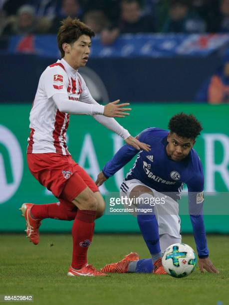 Yuya Osako of FC Koln Weston Mckennie of Schalke 04 during the German Bundesliga match between Schalke 04 v 1 FC Koln at the Veltins Arena on...