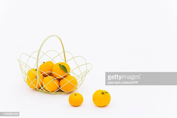 Yuzu Citrus Fruits in Basket