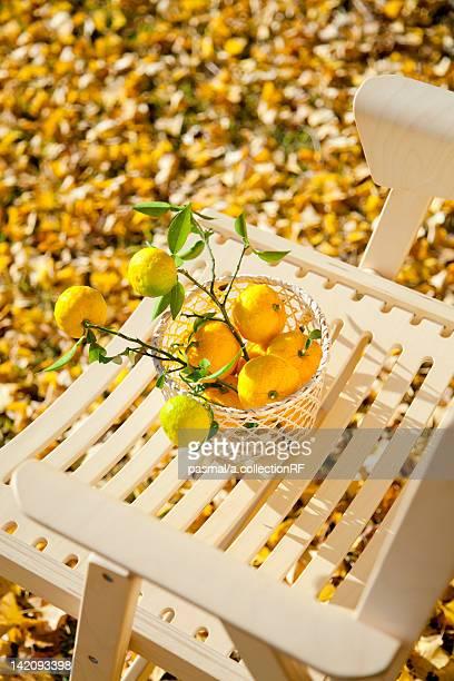 Yuzu Citrus Fruits on Chair