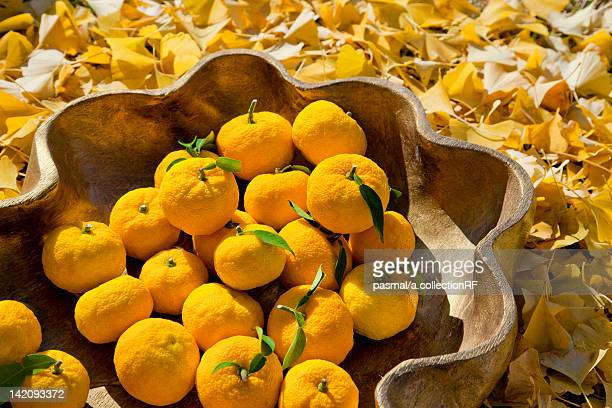 Yuzu Citrus Fruits