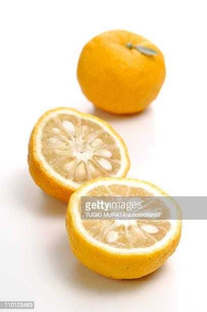 Yuzu Fruits