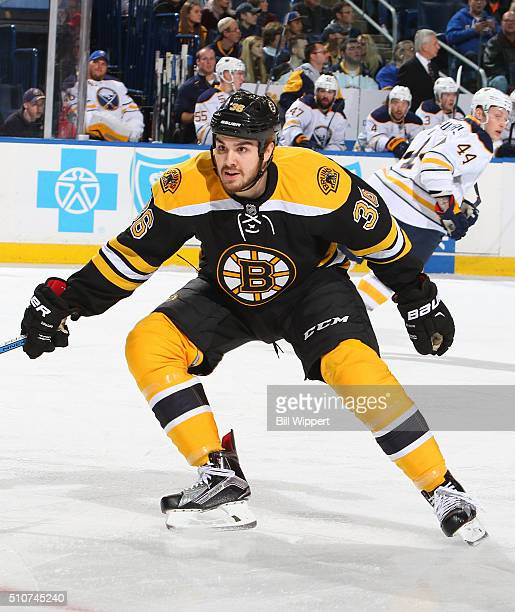Zac Rinaldo of the Boston Bruins skates against the Buffalo Sabres during an NHL game on February 4 2016 at the First Niagara Center in Buffalo New...