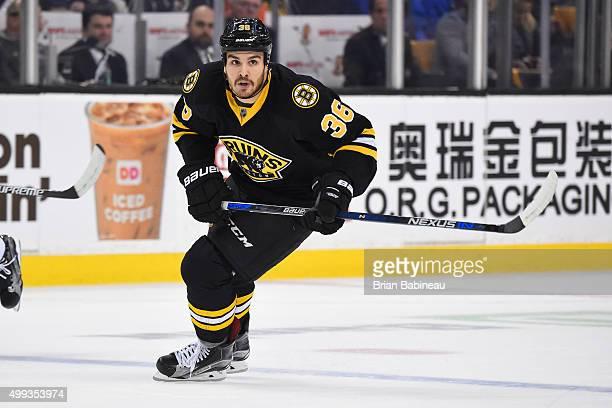 Zac Rinaldo of the Boston Bruins skates against the New York Rangers at the TD Garden on November 27 2015 in Boston Massachusetts