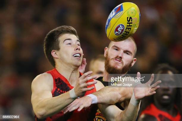 Zach Merrett of the Bombers and Kamdyn McIntosh of the Tigers compete for the ball during the round 10 AFL match between the Richmond Tigers and the...