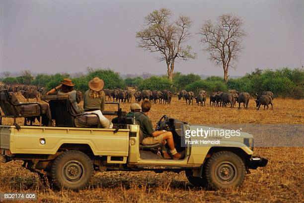 Zambia, South Luangwa National Park, group of people on safari