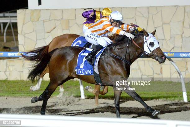 Zamboanga ridden by Nikita Beriman wins the XXXX Gold Maiden Plate at Racingcom Park Synthetic Racecourse on April 20 2017 in Pakenham Australia