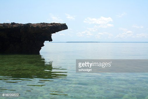 Zanzibar Beach : Stock Photo