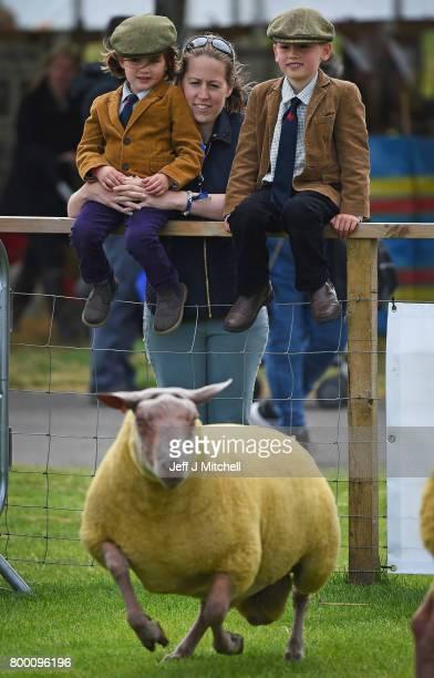 Zara Ailsa and Alfie Teasdale look on as farmers show their sheep at the Royal Highland show on June 23 2017 in Edinburgh ScotlandThe Royal Highland...