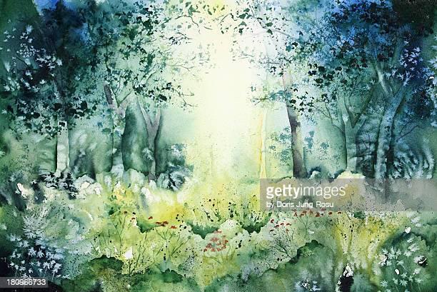 Zauberwald, magic forest