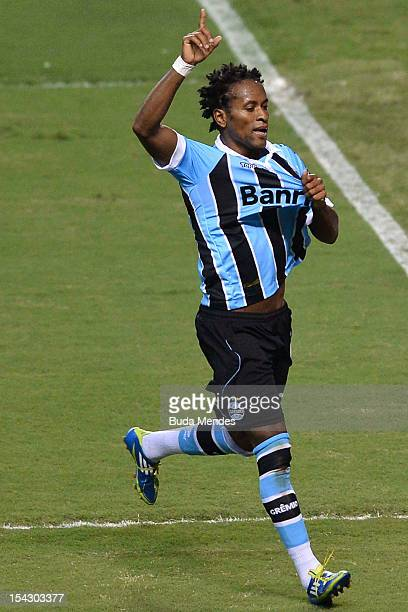 Ze Roberto of Gremio celebrates a goal against Flumimense during a match as part of Serie A 2012 at Engenhao stadium on October 17 2012 in Rio de...
