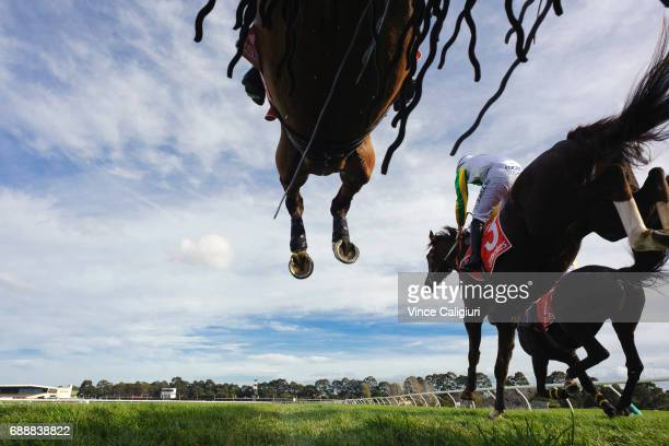 Zed Em John Allen riding Now and Zen and Lucky Tonight clear the second last steeple in Race 3 The Australian Steeplechase during Melbourne Racing at...