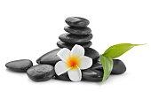 zen basalt stones ,frangipani,bamboo, ayurveda, zen-like