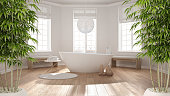 Zen interior with potted bamboo plant, natural interior design concept, classic spa bathroom with bathtub, minimalist scandinavian architecture