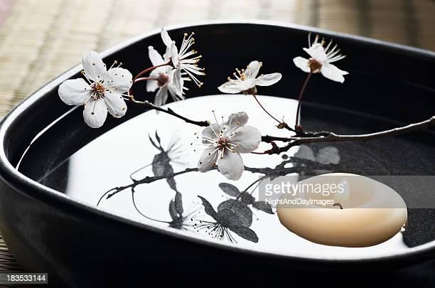 Nature morte de Spa Zen