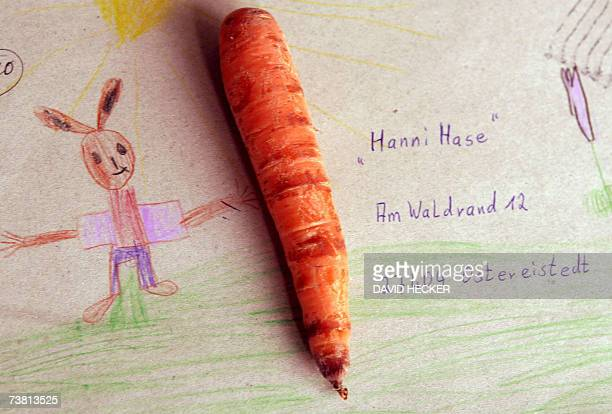 TO GO WITH AFP STORY by DEIKE SCHMIDT FILES A picture taken 22 March 2006 shows a carrot laying on a letter addressed to easter bunny 'Hanni Hase' at...