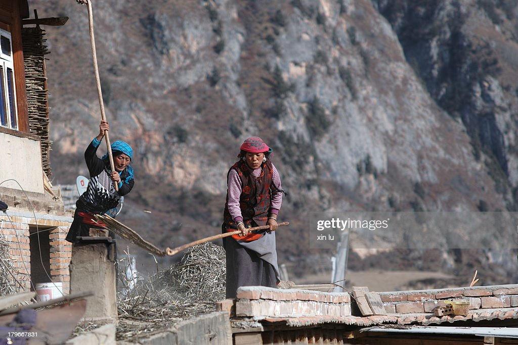 CONTENT] ZhaGaNa is a remote mountain village farm work here mainly rely on women to complete the tibetans in the photo is flap with fine iron dried...