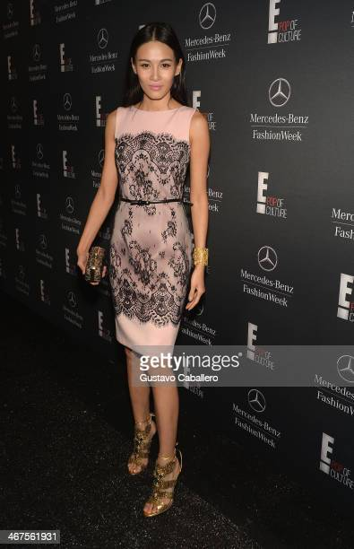 Zhang Lanxin is seen during MercedesBenz Fashion Week Fall 2014 at Lincoln Center for the Performing Arts on February 6 2014 in New York City