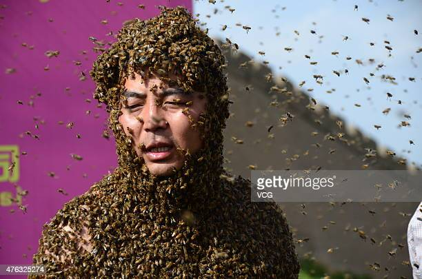Zhang Wei 31yearold bee farmer from Zizhou County is covered with a swarm of bees on June 6 2015 in Yulin Shannxi Province of China Zhng Wei released...