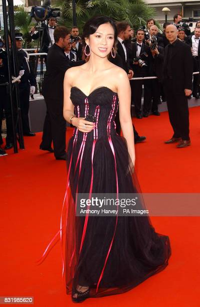 Zhang Ziyi arrives for the premiere of Babel at the Palais des Festival during the 59th Cannes Film Festival in France