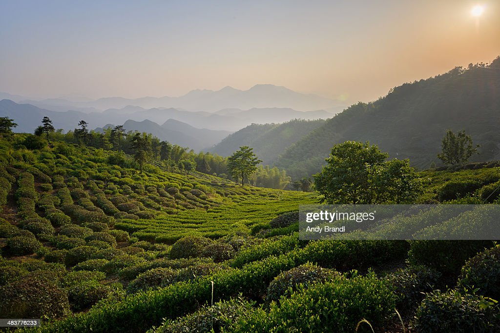 Zhejiang Province At Its Best : Stock Photo