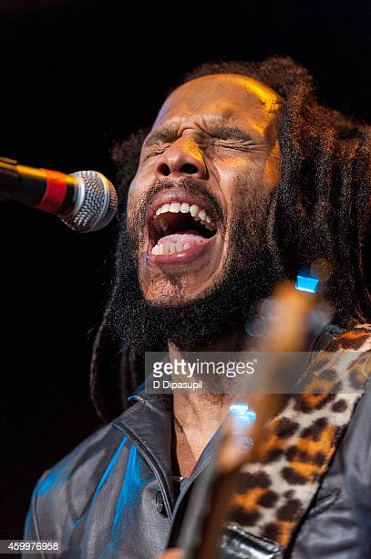 Ziggy Marley performs onstage during the 17th Annual Samuel Waxman Cancer Research Foundation's Collaborating For A Cure Benefit Dinner Auction at...