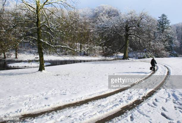 Zijpendal Park During Winter in Netherlands