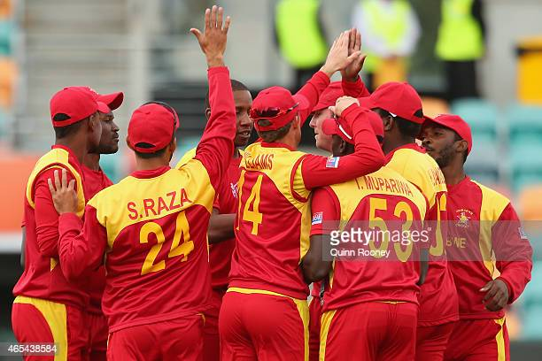Zimbabwe players celebrate the wicket of Paul Stirling of Ireland during the 2015 ICC Cricket World Cup match between Zimbabwe and Ireland at...