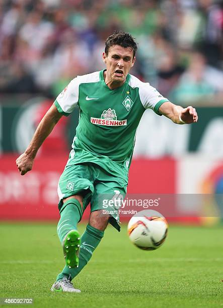 Zlatko Junuzovic of Bremen in action during the Bundesliga match between Werder Bremen and Borussia Moenchengladbach at Weserstadion on August 30...