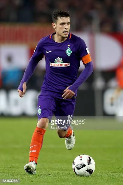 Zlatko Junuzovic of Bremen runs with the ball during the Bundesliga match between 1 FC Koeln and Werder Bremen at RheinEnergieStadion on May 5 2017...
