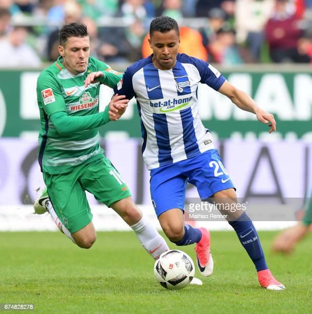 Zlatko Junuzovic of Werder Bremen and Allan of Hertha BSC during the game between Werder Bremen and Hertha BSC on April 29 2017 in Bremen Germany