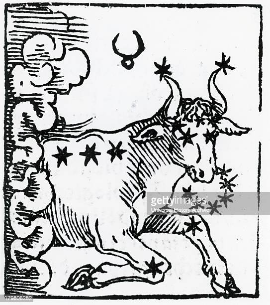 Zodiac sign of Taurus From ''Sphaera mundi'' Strasburg 1539