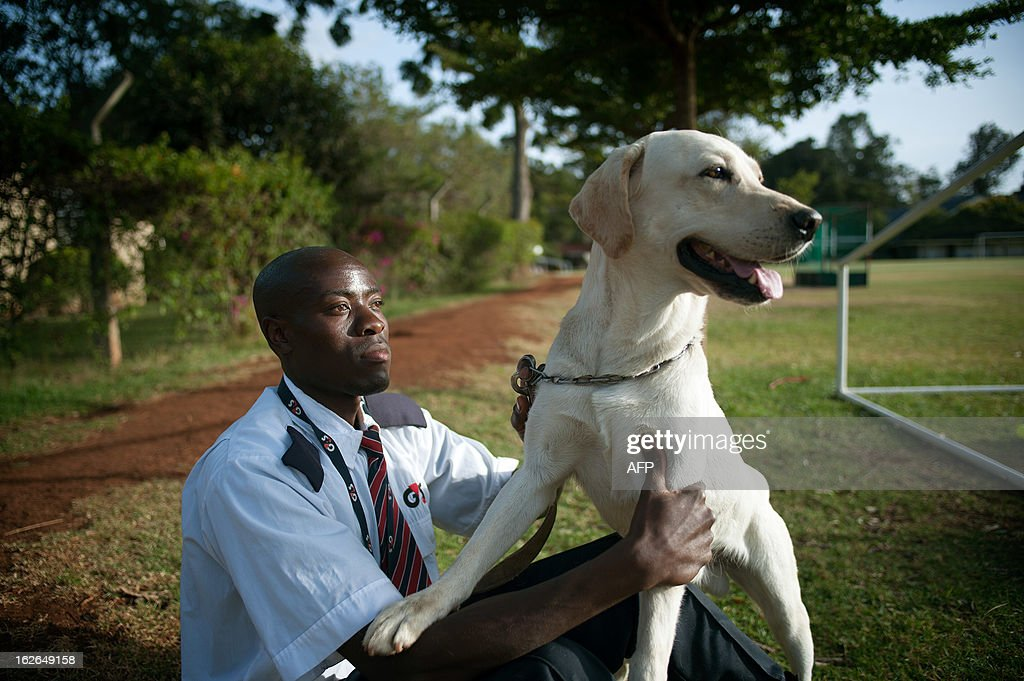 Zone, a bomb-sniffing dog, is pictured here with its handler outside the presidential debate at Brookhouse School in Karen, Nairobi, on February 25, 2013. Kenya is gearing up for presidential, gubernatorial, senatorial elections on March 4, the first since bloody post-poll violence five years ago in which more than 1,100 people died after contested results. AFP PHOTO - POOL / Will Boase