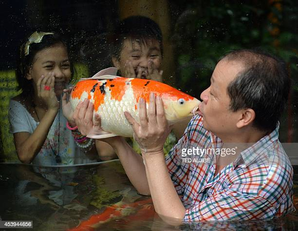 Zoo owner Manny Tangco kisses a Japanese Koi carp while children look on inside an aquarium at a zoo in Manila on August 22 2014 The Japanese Koi...