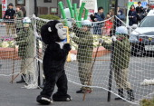 Zookeepers hold a net to capture an animal keeper dressed in a gorilla costume during a drill to practice what to do in the event of an animal escape...