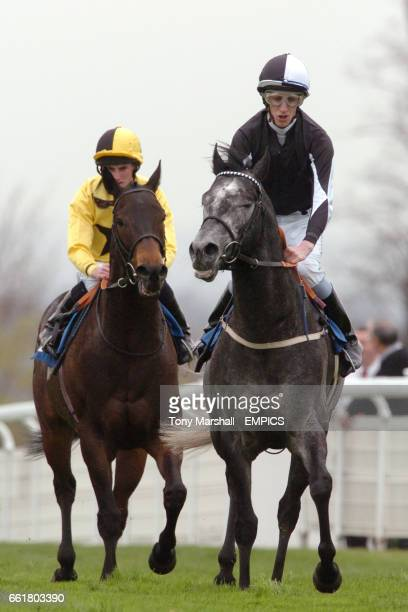 Zowington ridden by G Baker after winning the World Cup Cashback At Blue Square Handicap is followed by second place Cape Royal ridden by R L Moore