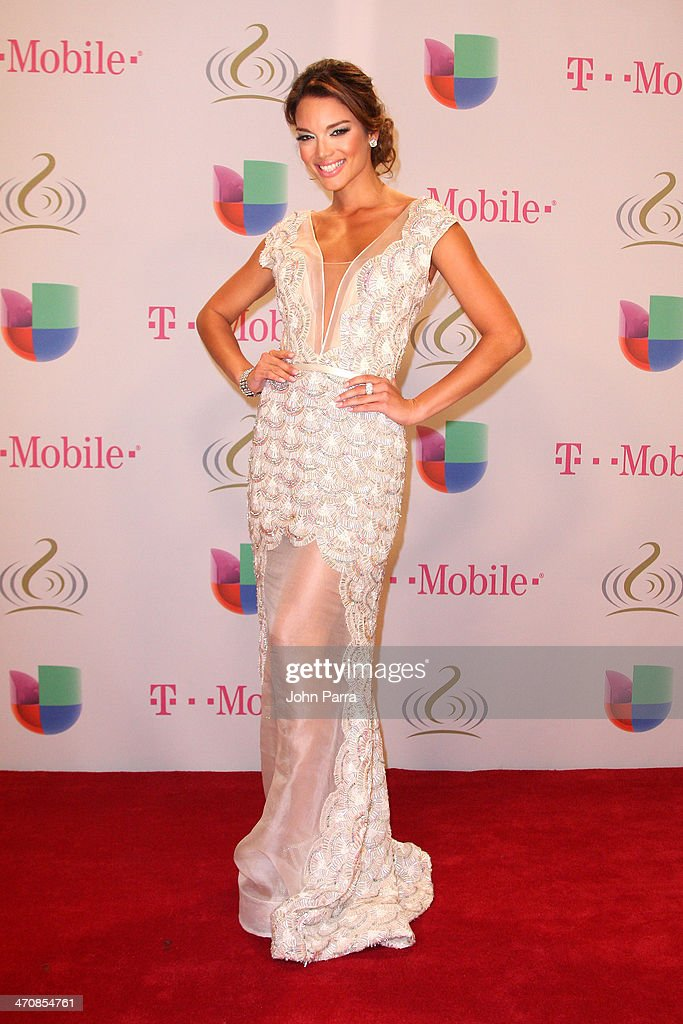 <a gi-track='captionPersonalityLinkClicked' href=/galleries/search?phrase=Zuleyka+Rivera&family=editorial&specificpeople=3957995 ng-click='$event.stopPropagation()'>Zuleyka Rivera</a> attends Premio Lo Nuestro a la Musica Latina 2014 at American Airlines Arena on February 20, 2014 in Miami, Florida.