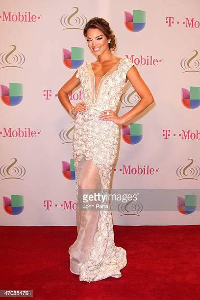 Zuleyka Rivera attends Premio Lo Nuestro a la Musica Latina 2014 at American Airlines Arena on February 20 2014 in Miami Florida