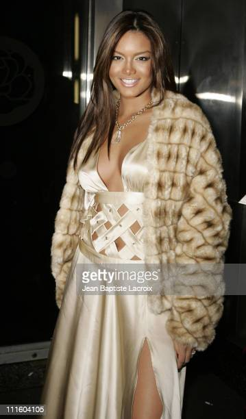 Zuleyka Rivera Miss Universe 2006 during MercedesBenz Fashion Week Fall 2007 Baby Phat Departures at Roseland Ballroom in New York City New York...