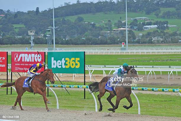 Zupa Hero ridden by Anthony Boyd wins Rochelleâs Hens Party Maiden Plate at Racingcom Park Synthetic Racecourse on September 10 2016 in Pakenham...