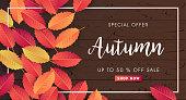Autumn calligraphy. Seasonal lettering.vector illustration